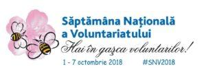 Invitație la implicare în SNV 2018
