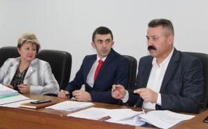 Comisiile consultative de specialitate întrunite în ultima şedinţă din acest an