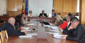 Comisiile consultative de specialitate în şedinţă