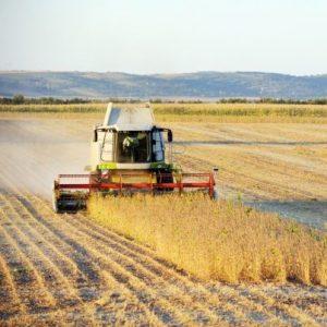 Astăzi, Republica Moldova marchează Ziua lucrătorului din agricultură şi industria prelucrătoare care, anual, se sărbătorește în a patra duminică a lunii noiembrie.